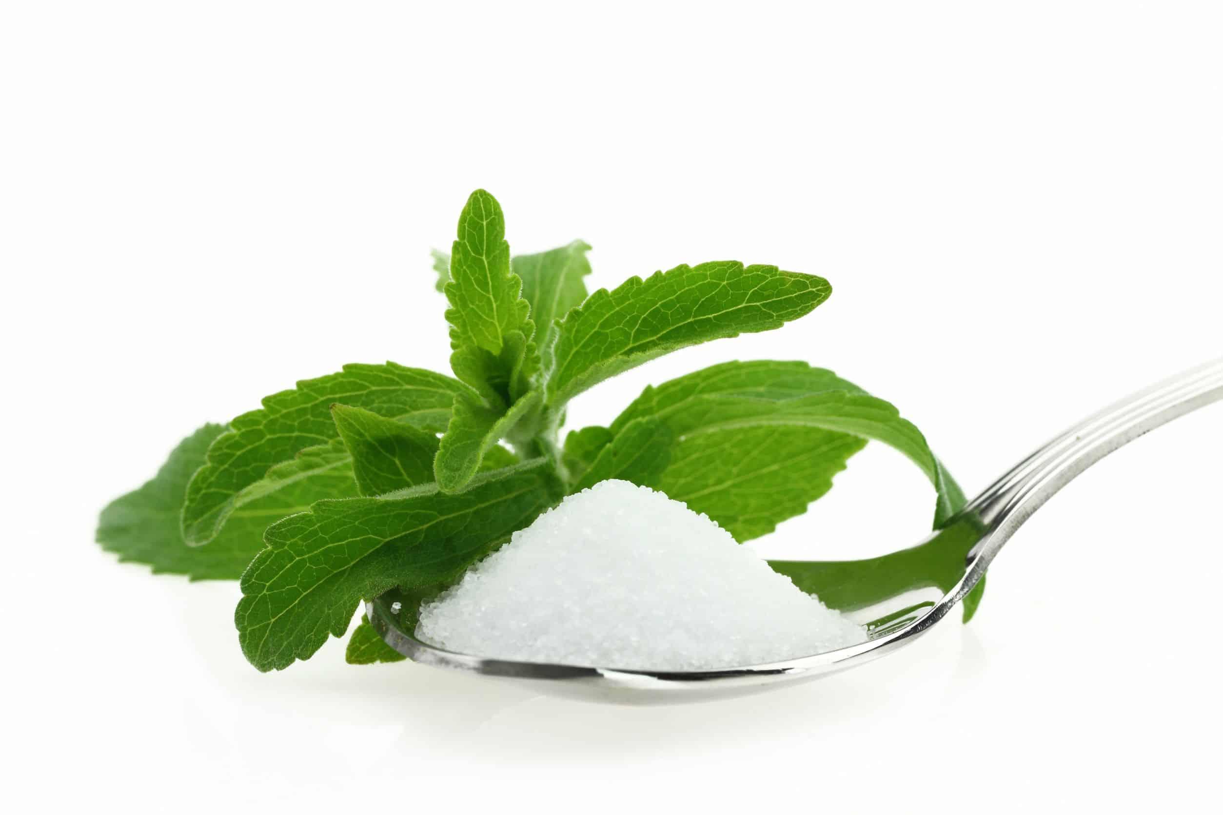 Miglior stevia 2020: Guida all'acquisto