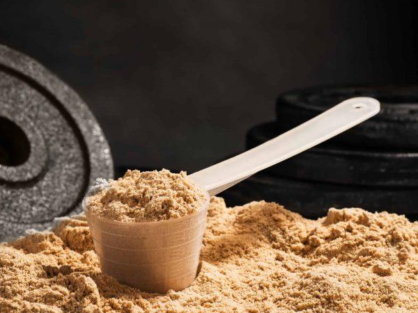 Proteine Whey in polvere