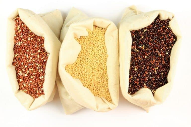 quinoa-tipi