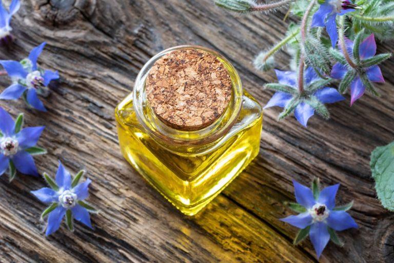 Boccetta di olio di borragine