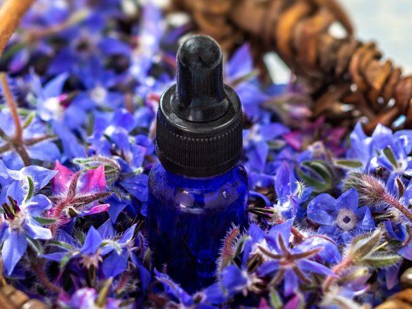 Boccetta di olio di borragine e fiori