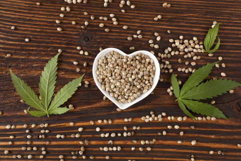 Semi e foglie di canapa