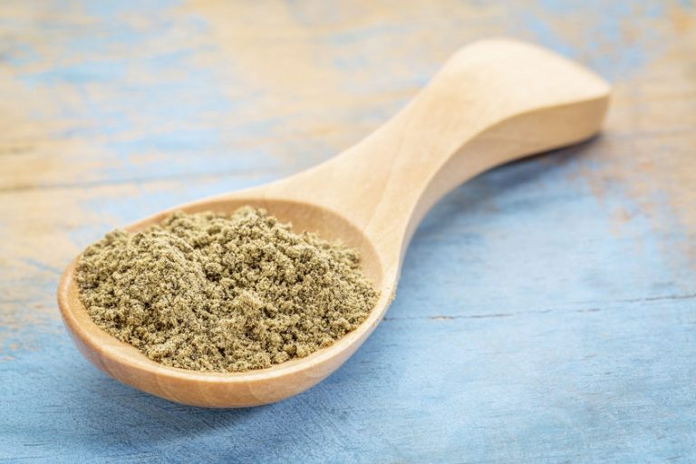 Proteine della canapa in un cucchiaio di legno
