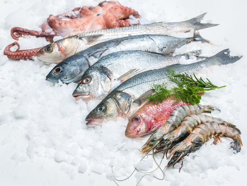 pesce nel ghiaccio