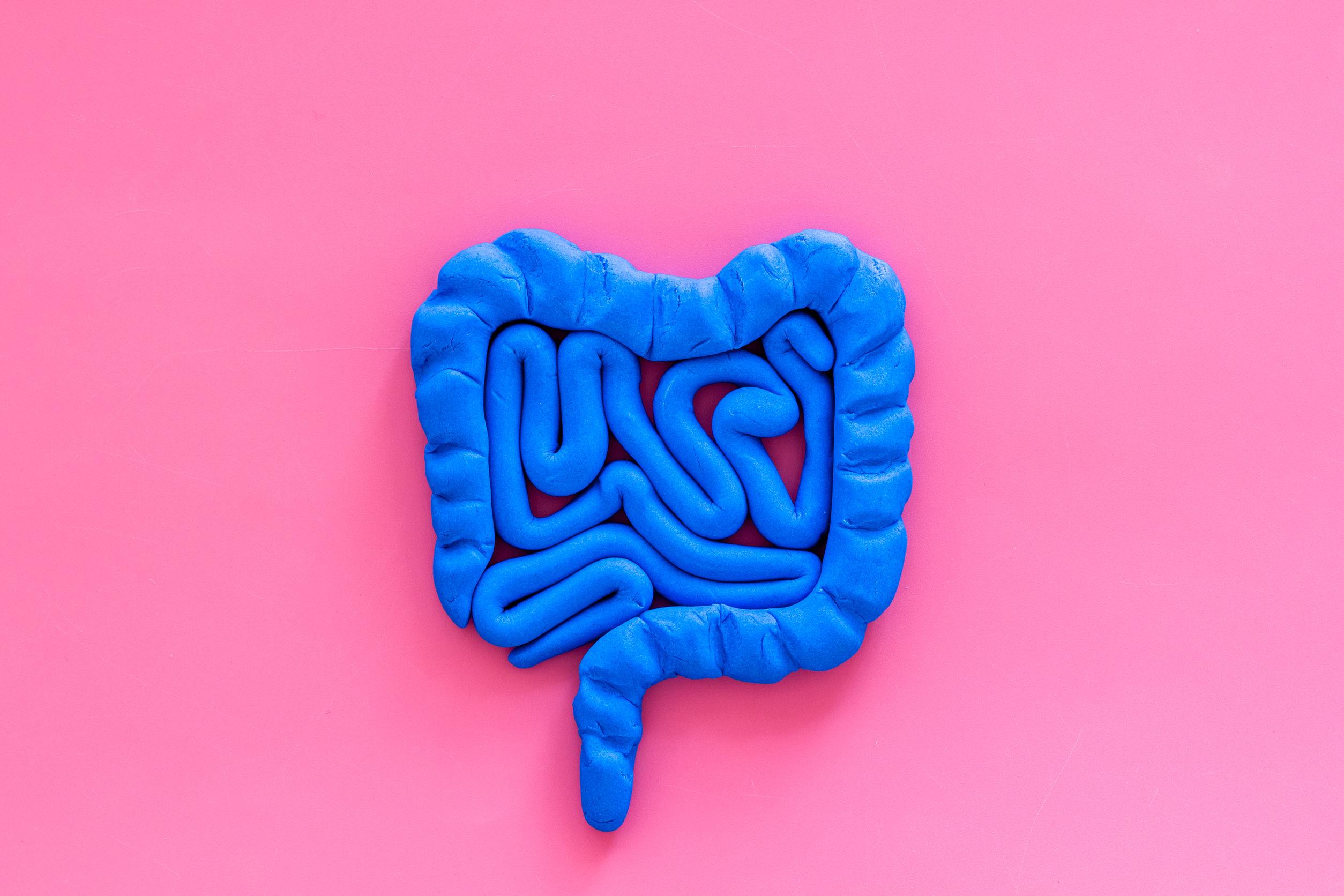 Intestino blu