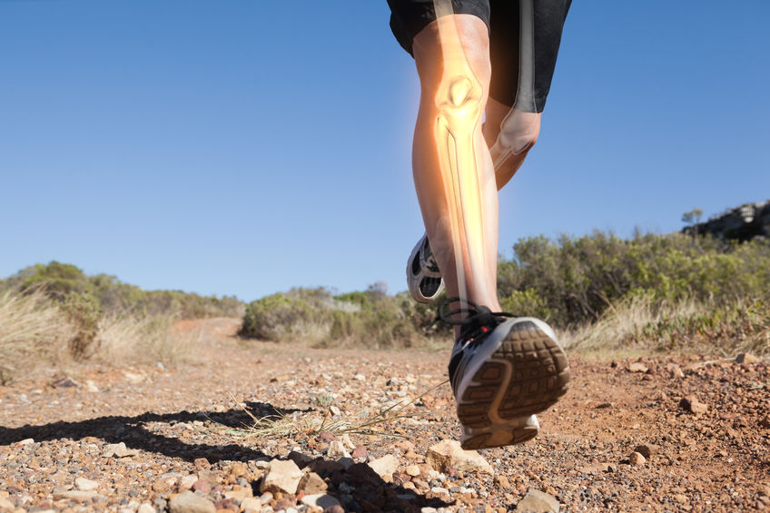 Infografica delle ossa di una gamba