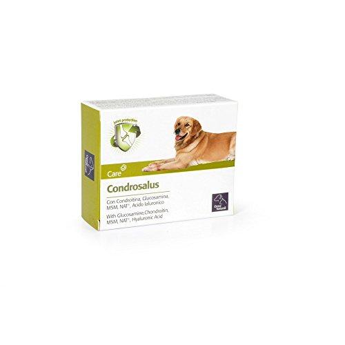 Camon Condrosalus Compresse Per Cani Da 1000 Milligrammi - Confezione Da 60 Compresse - Adatto In Casi Di Osteoartrite, Supporto Del Metabolismo Articolare